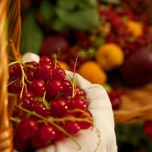 diet helps hormone balance